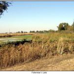 Riparian Basin Habitats