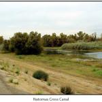 Natomas Cross Canal