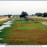 Steelhead Creek (also known as the Natomas East Main Drain Canal)
