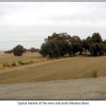 Southern and Western Basin Habitats