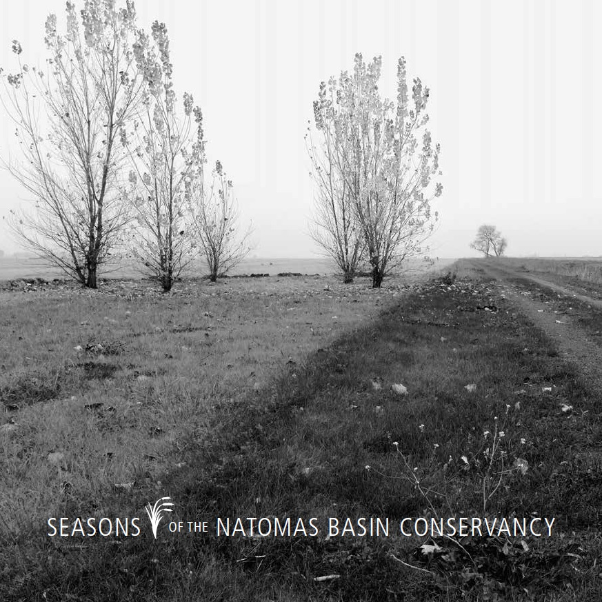Seasons of the Natomas Basin Conservancy