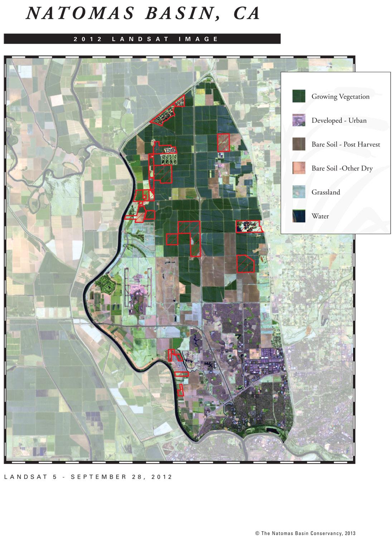 Year-end 2012 LANDSAT image