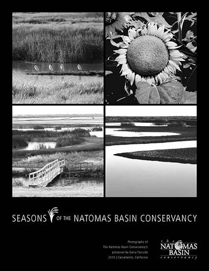 Seasons-of-Conservancy_425