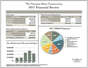 Annual Audits of Year-end Financial Statements