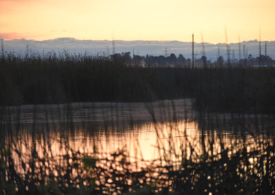 Amazing rays of sunlight disappearing across the marshland